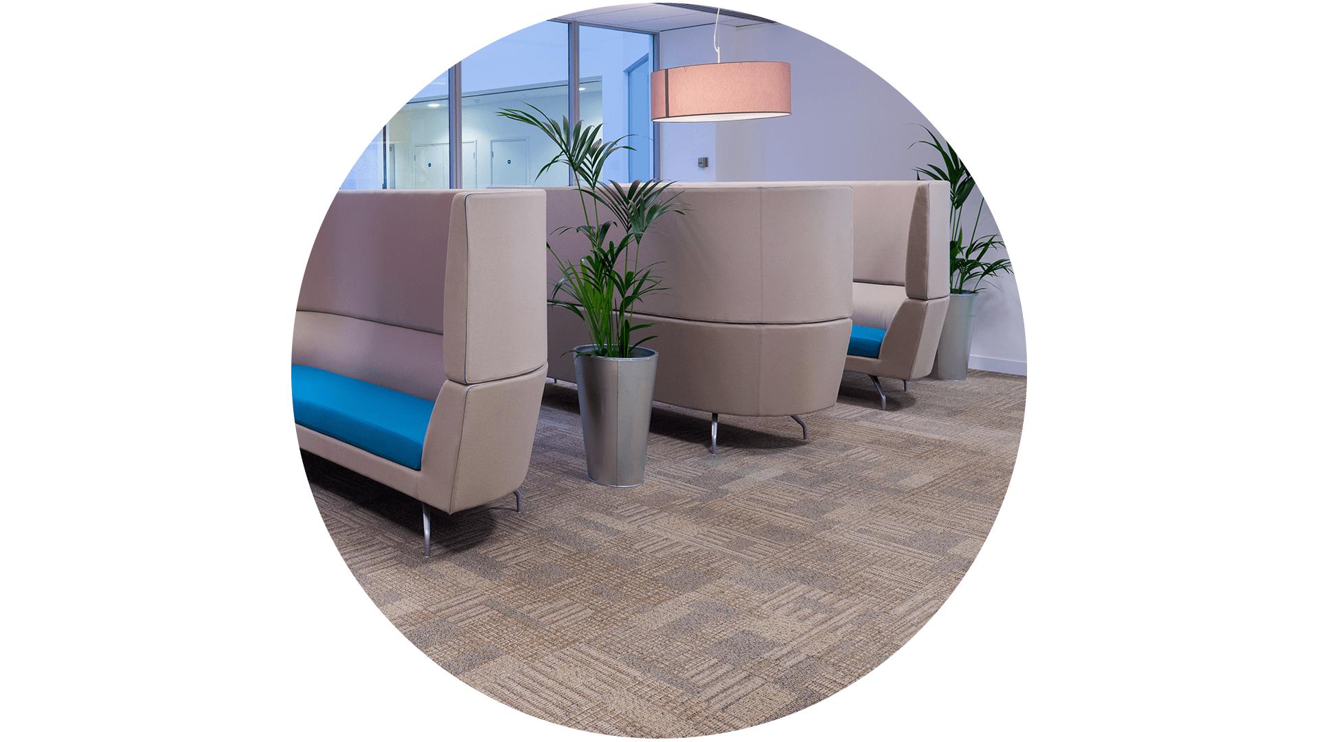 Carpet Flooring and Area Rugs
